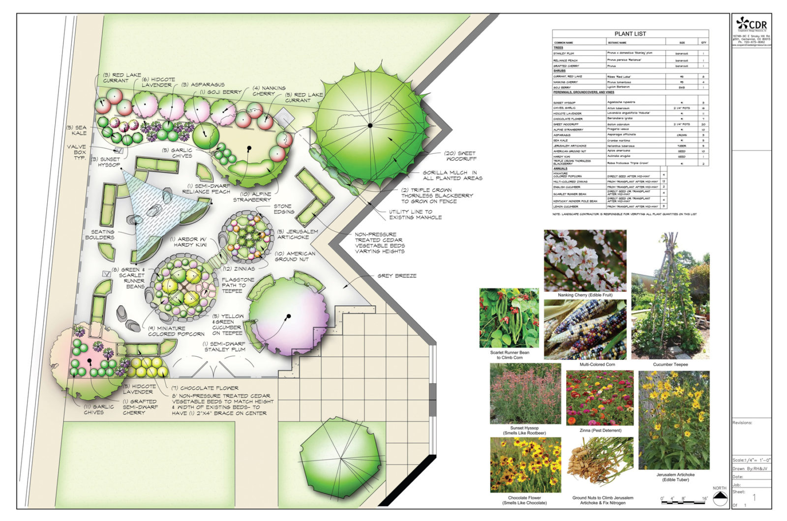 Edible Permaculture School Yard Landscape Plan